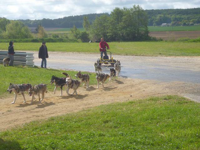 quad tracté par des husky à la nationale 2cv 2013